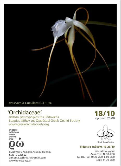 orch_poster